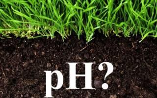 Как изменить кислотность почвы на даче?