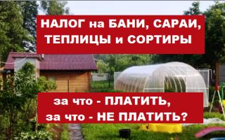 Налог на баню на дачном участке