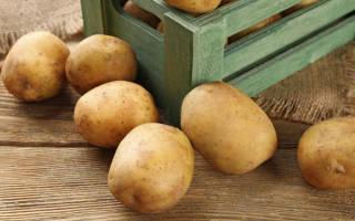 Как сохранить картофель без погреба на даче?