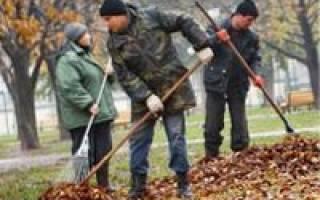 Как использовать опавшую листву на дачном участке?