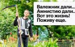 Срок действия дачной амнистии для садовых товариществ