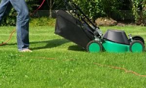 Куда девать скошенную траву на даче?