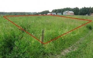 Как оформить заброшенный дачный участок в собственность?
