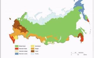 Климатические зоны России по регионам